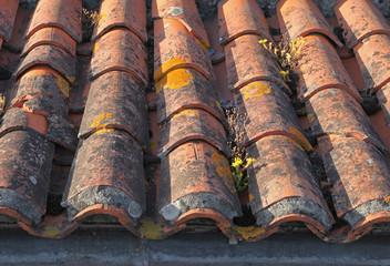 C-Rénovation : Comment nettoyer un toit en tuiles à Tournefeuille ?