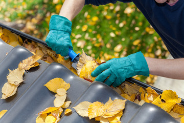 C-Rénovation : Quand faire le démoussage de sa toiture à Fronton ?