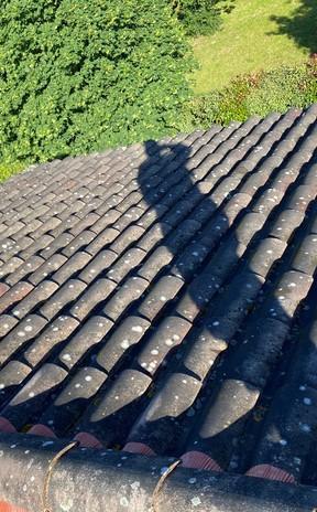 Nettoyage de toiture à L'Union 31